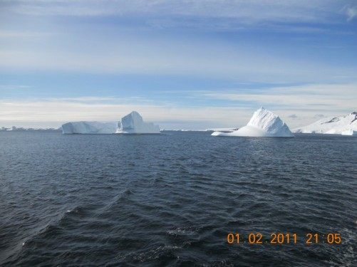 Heading back to the ship in the Zodiac - icebergs floating in the distance.