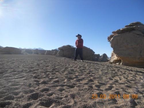The altitude of the Siloli desert makes it the highest desert in the world.