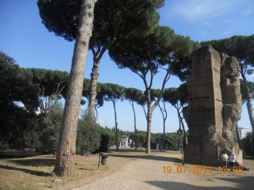 Roman ruins at Palatine Hill.