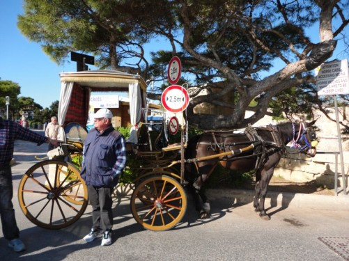 A horse and cart offering rides to tourists at the Main Gate.