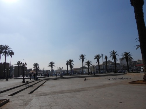 View across the square outside Bab El Had. The medina wall is just visible to the left. There are palm trees around the edge of the square.