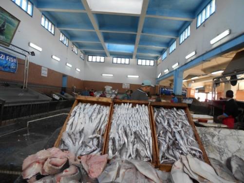 Boxes full of fish. Fish market.