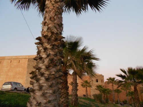 The outer wall of the Kasbah des Oudaias.