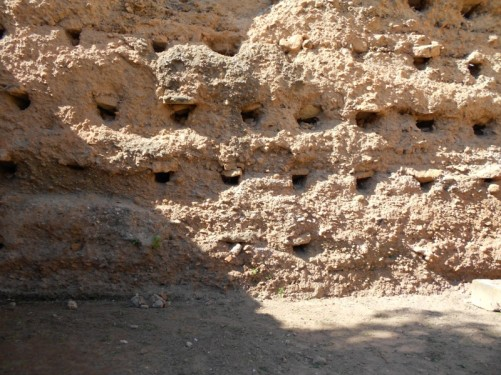 A earthen wall with rows of holes.