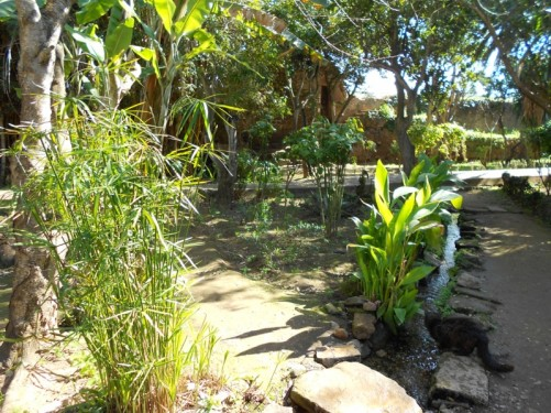 The gardens - paths, plants and water flowing along an irrigation channel.