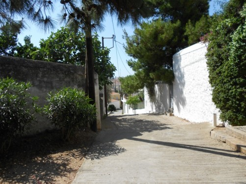 A pleasant back street in Spetses.