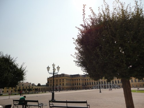 Formally cut trees and benches at the edge of the courtyard in the Great Parterre the sculpted garden space between the palace and the Sun Fountain.