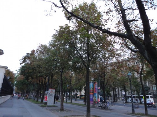 On the Ringstraße (Ring Boulevard), a circular boulevard, 4 kilometres long, which surrounds the Innere Stadt district in Vienna's centre.