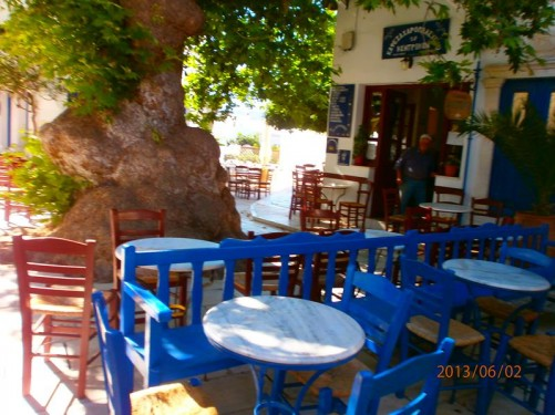Wooden chairs and tables outside a café. Shaded by a large old-looking tree.