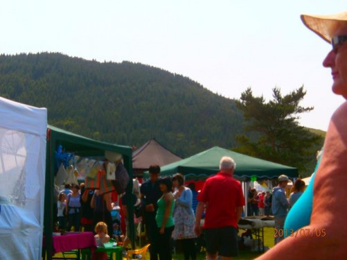 Tynwald Fair. Lots of stalls, crowded with people.