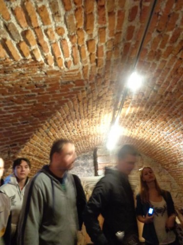 Inside a room, perhaps a cellar or dungeon, with arched brick walls and ceiling.