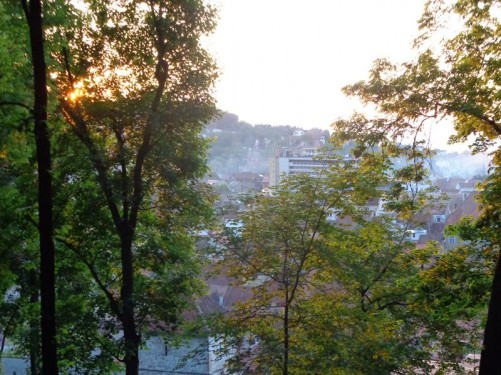 Evening view from Tâmpa Hill. The city below can partially be seen through the trees.