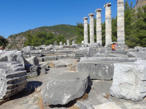 The Temple of Athena. Five stone columns standing in the background. These columns were erected in 1965–66 from rubble and are 3 metres (9.8 feet) short of the calculated original column height. The temple was the largest edifice and most significant structure at Priene. It was built between the 4th and 2th centuries BC and was funded by Alexander the Great.