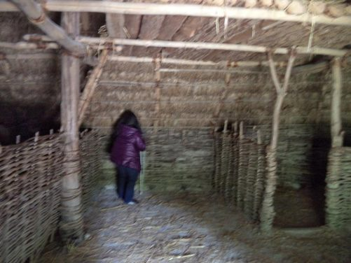 Tatiana exploring inside a larger hut. The hut is divided into compartments, probably for keeping animals.