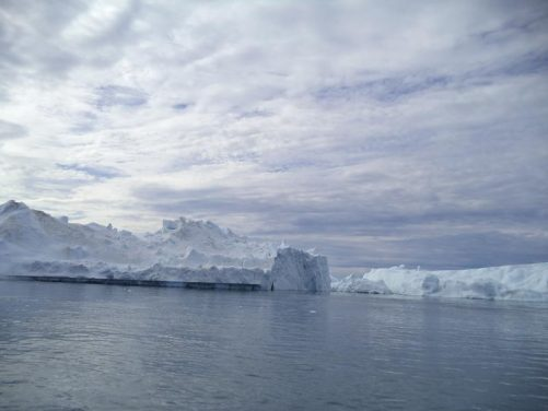 Massive icebergs seen from the boat.