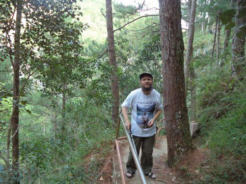 Tony on a steep trail through pine trees.
