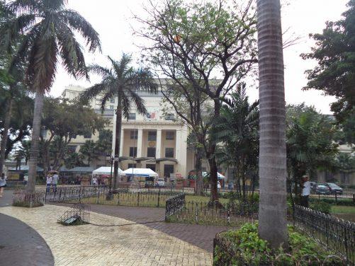 Plaza Sugbo. Looking between palm trees towards Cebu City Hall.