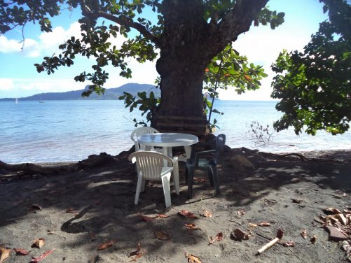 Table and chairs under the shade of a tree on the edge of Tahiti Beach (Mtsanga Mtsanyounyi Beach) where Tony had lunch. The sea visible in the background.